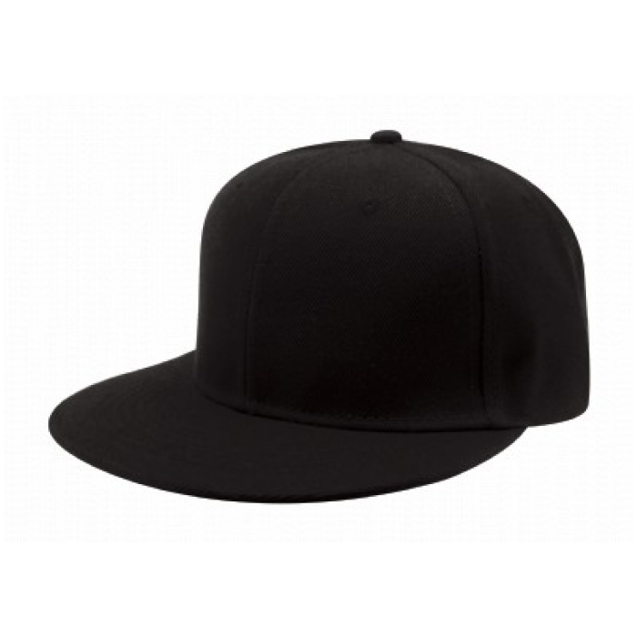 Original Snap Back
